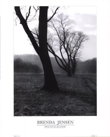 brenda-jensen-the-dance