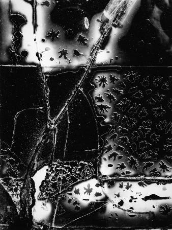 brett-weston-broken-glass