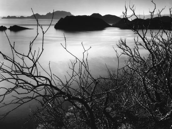 brett-weston-cliff-overlooking-bay