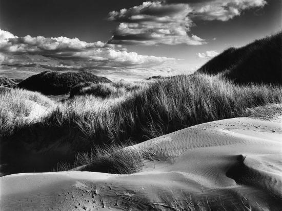 brett-weston-dunes-and-grasses-oceano-1957