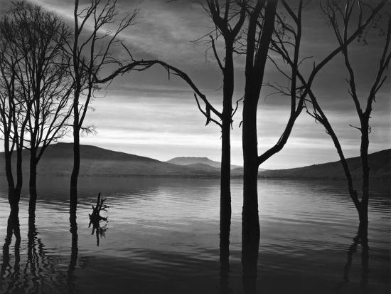 brett-weston-lake-patzcuaro-mexico-1976
