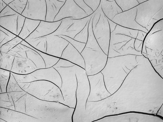 brett-weston-mud-cracks-by-brett-weston