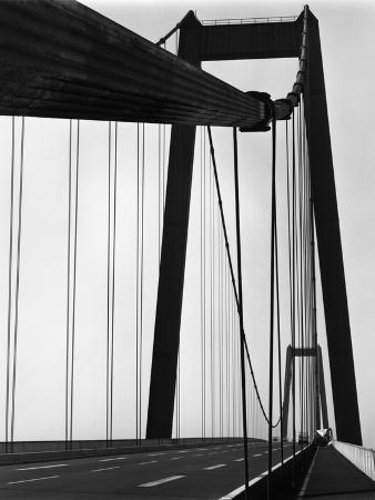 brett-weston-suspension-bridge
