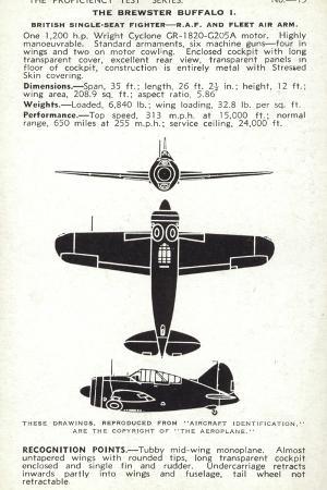 brewster-buffalo-american-fighter-aircraft