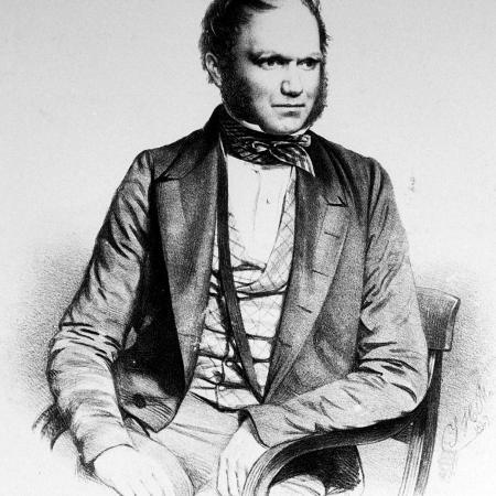 british-naturalist-advanced-theory-of-evolution-charles-darwin-portrayed-in-lithograph-by-maguire