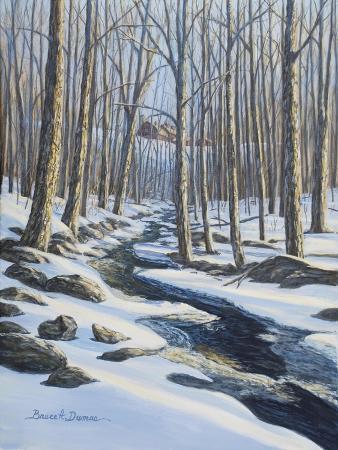 bruce-dumas-woodland-farm-stream