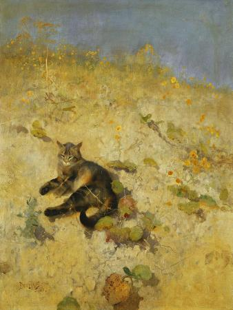 bruno-andreas-liljefors-a-cat-basking-in-the-sun-1884