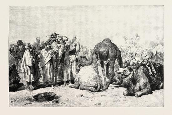 camel-market-egypt-1879
