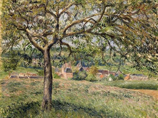 camille-pissarro-apple-tree-in-eragny-1884