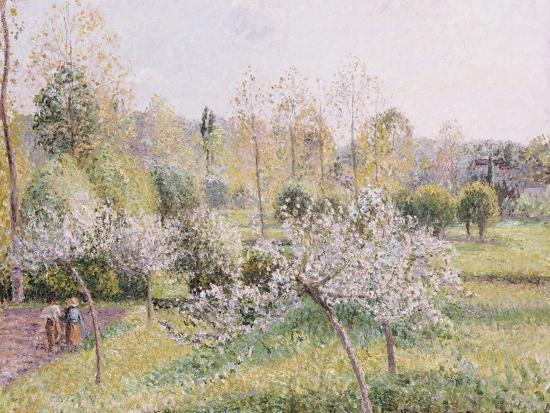 camille-pissarro-apple-trees-in-blossom-eragny-1895