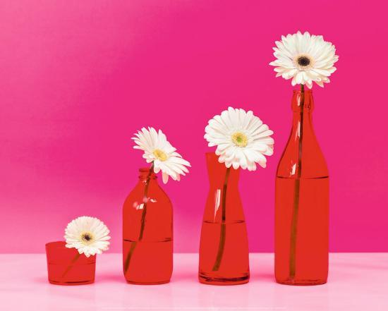camille-soulayrol-pop-flowers