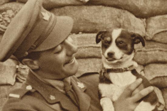 canadian-soldier-with-a-dog-captured-at-courcelette-somme-france-world-war-i