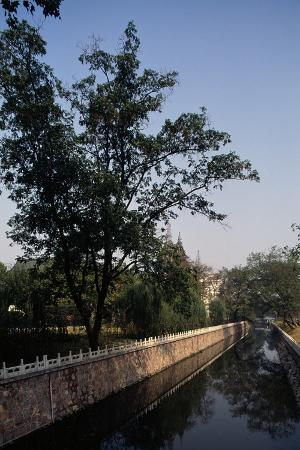canal-flanked-by-trees-ming-palace-nanjing-jiangsu-14th-century