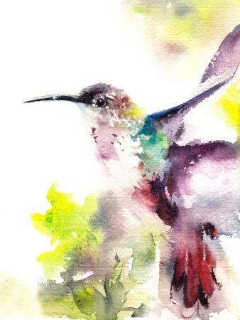 canotstop-hummingbird