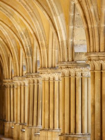 capitals-and-pillars-royaumont-abbey-cloister-asnieres-sur-oise-val-d-oise-france-europe
