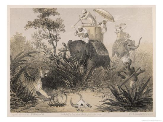 captain-g-f-atkinson-british-in-india-shooting-a-tiger-from-elephants