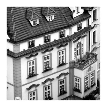 carl-ellie-old-city-i
