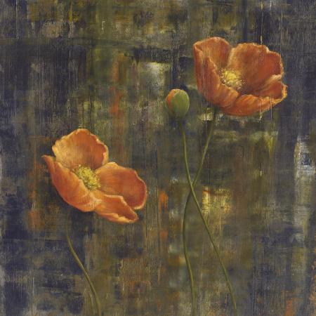 carol-black-iceland-poppies-i