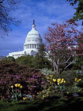 carol-highsmith-united-states-capitol-building-houses-of-congress