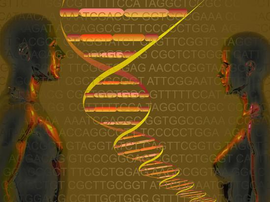 carol-mike-werner-biomedical-illustration-of-the-personal-human-genome-the-concept-of-individual-dna-testing