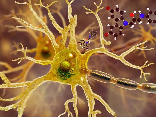 carol-mike-werner-illustration-of-p7c3-and-alzheimer-s-disease