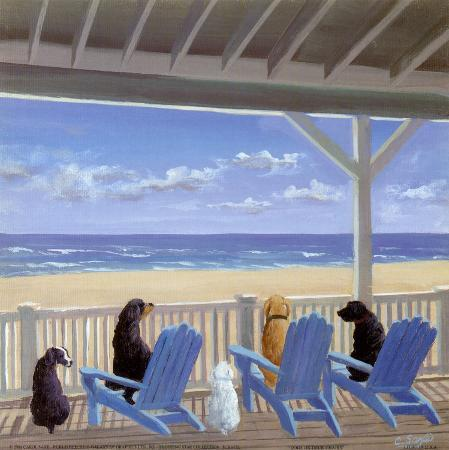 carol-saxe-dogs-on-deck-chairs