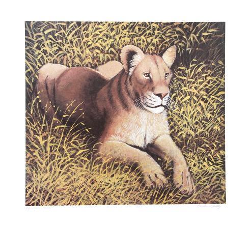caroline-schultz-ngorongoro-lioness