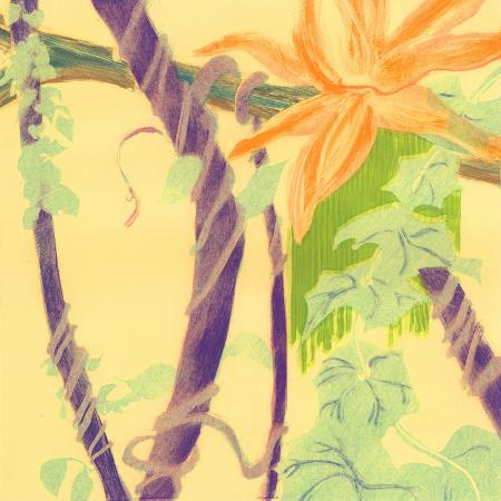 carolyn-roth-jungle-monotype-v