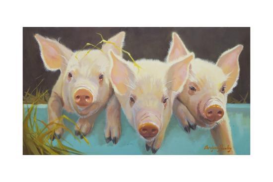 carolyne-hawley-life-as-a-pig-i