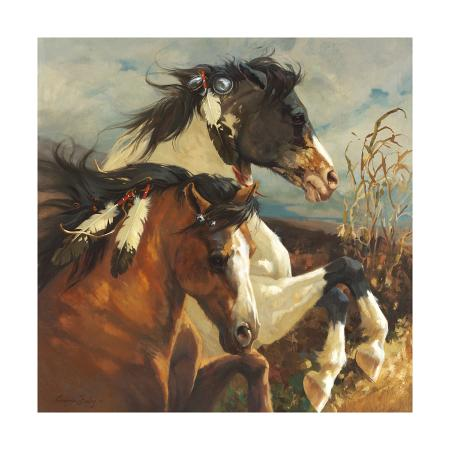 carolyne-hawley-wind-voyager