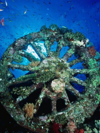 casey-mahaney-a-locomotive-wheel-is-one-of-the-remains-of-the-wreck-of-the-numidea-sank-in-1901-egypt