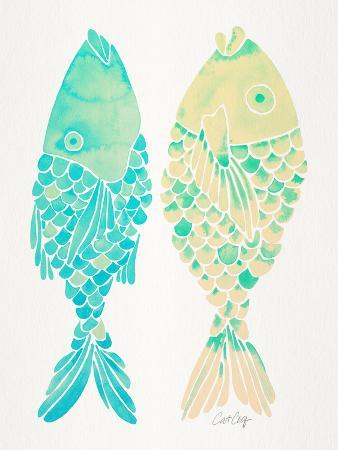 cat-coquillette-turquoise-cream-indonesian-fish