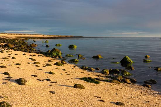 catharina-lux-iceland-gardskagi-coast-evening-light