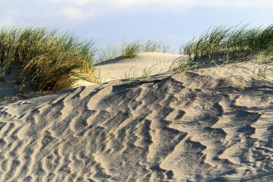 catharina-lux-lithuania-curonian-spit-perwalka-drifting-sand-dune