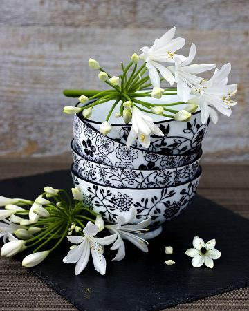 catherine-beyler-flowers-in-a-bowl