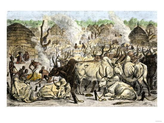 cattle-farm-of-the-dinka-a-swahili-speaking-people-in-africa-1800s