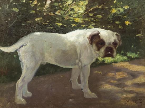cecil-aldin-a-bulldog-on-a-garden-path