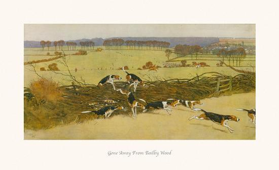 cecil-aldin-gone-away-from-bailby-wood
