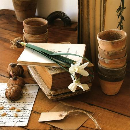 celine-sachs-jeantet-le-botaniste