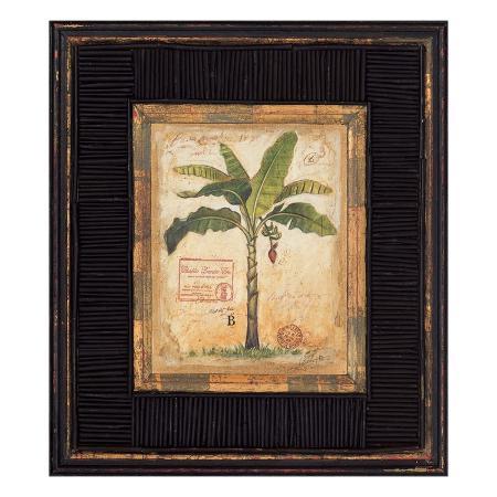chad-barrett-banana-palm