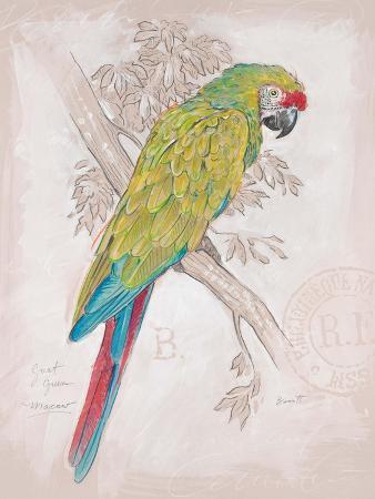 chad-barrett-chartreuse-tropical