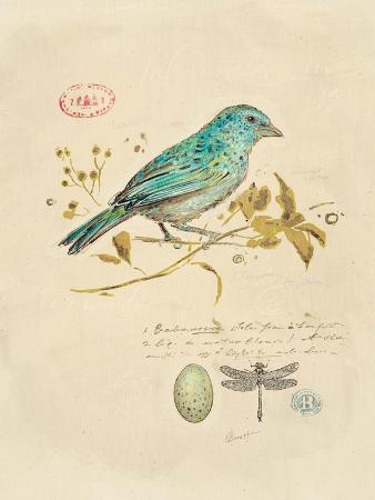 chad-barrett-gilded-songbird-1