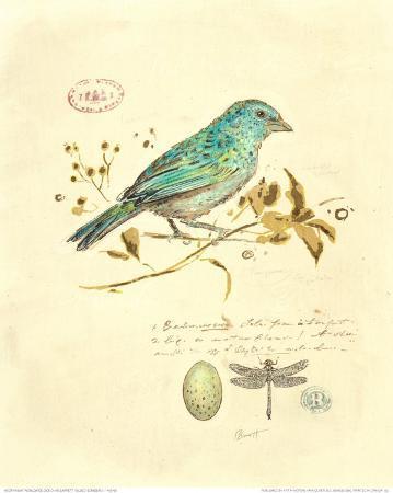chad-barrett-gilded-songbird-i