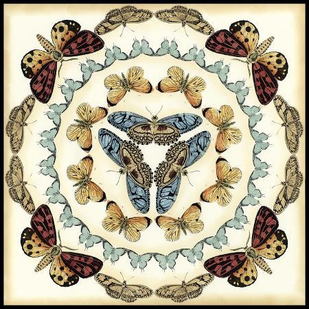 chariklia-zarris-butterfly-collector-iv