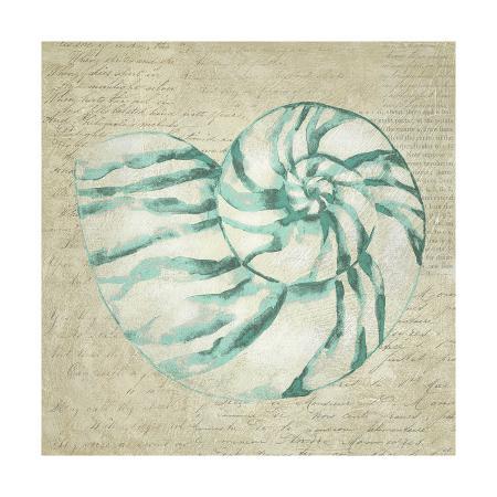 chariklia-zarris-seafoam-shell-i