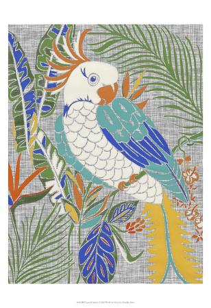 chariklia-zarris-tropical-cockatoo