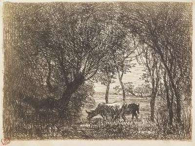 Assistante Sociale Aulnay Sous Bois - Vaches Sous Bois, 1862 Giclee Print by Charles Francois Daubigny at Art co uk