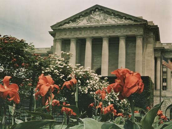 charles-martin-flowers-in-front-of-a-columned-building-in-washington-d-c