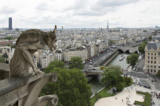 charles-sleicher-europe-france-paris-a-gargoyle-on-the-notre-dame-cathedral