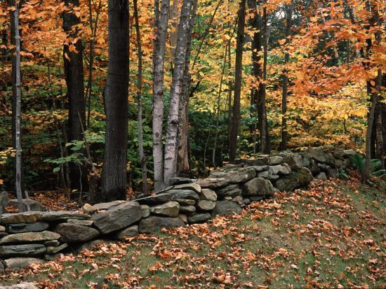 charles-sleicher-stone-fence-in-vermont-usa